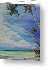 Nylon Pool Tobago. Greeting Card