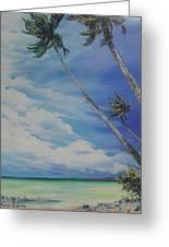 Nylon Pool Tobago. Greeting Card