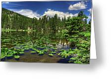 Nymph Lake Greeting Card