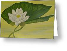 Nymphaea Alba Greeting Card