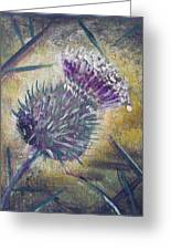 O' Flower Of Scotland Greeting Card