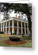 Oak Alley Plantation Greeting Card by Perry Webster