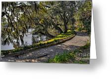 Oak And River Path Greeting Card