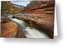 Oak Creek In Slide Rock State Park Greeting Card