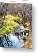 Oak Creek Twilight Greeting Card