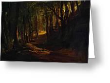 Oak Grove At San Terenzo Greeting Card