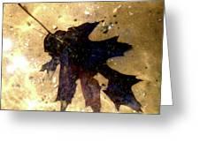 Oak Leaf Underwater Greeting Card