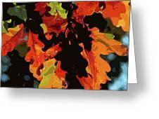 Oak Leaves In Autumn Greeting Card
