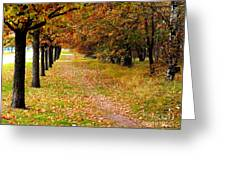 Oak Line Greeting Card
