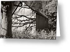 Oak Shadows On A Barn Greeting Card