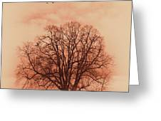 Oak Tree Alone  Greeting Card