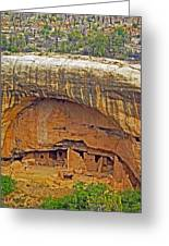 Oak Tree House - Mesa Verde Greeting Card