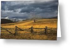 Oak Tree In Storm Greeting Card