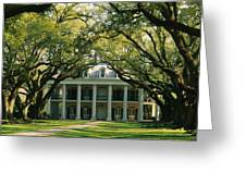 Oak Trees In Front Of A Mansion, Oak Greeting Card