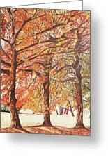 Oak Trees In The Park Greeting Card