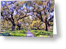 Oaks And Spanish Moss Greeting Card