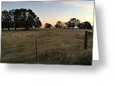 Oaks At Dusk Greeting Card