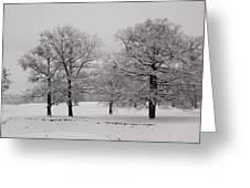 Oaks In Winter Greeting Card by Gabriela Insuratelu