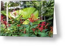 Oasis Jungle Greeting Card