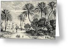 Oasis Of Gafsa  Tunis Greeting Card
