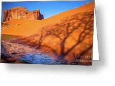 Oasis Tree Shadow Greeting Card