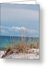 Oats On The Sand Greeting Card