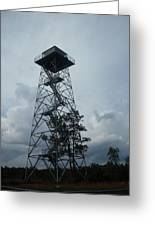 Ocala National Forest Fire Tower Greeting Card