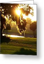 Ocala Sunset Greeting Card