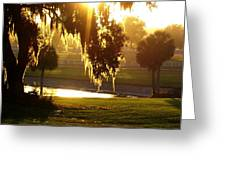 Ocala Sunset Greeting Card