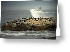 Ocean Angel II Splashed And Birds Greeting Card