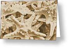 Ocean Angels Greeting Card