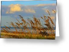 ocean/ Beach Greeting Card