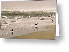 Ocean Edge Greeting Card