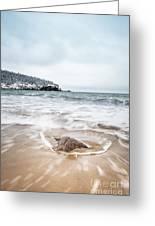 Ocean Flows Greeting Card