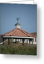 Ocean Isle Pelican Weathervane Greeting Card