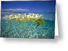 Ocean Surface Greeting Card