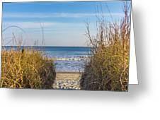 Ocean Through The Dunes Greeting Card