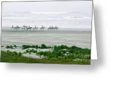 Ocean Trail Ride Greeting Card