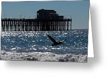 Oceanside Resident Photograph Greeting Card