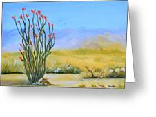 Ocotillo In The Park Greeting Card