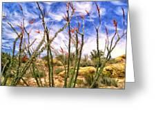 Ocotillos In Bloom Greeting Card
