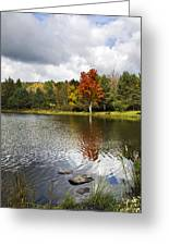 October Brisk Waterscape Greeting Card
