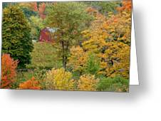 October Fifteenth Greeting Card