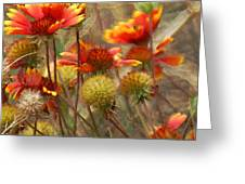 October Flowers 2 Greeting Card