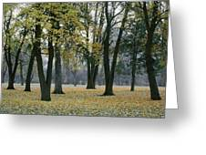 October In Palouse City Park Greeting Card