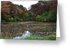 October Leaves Greeting Card