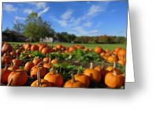 October Postcard  Greeting Card