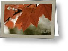 October Red Greeting Card