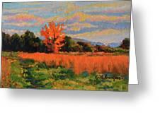 October Sky Greeting Card