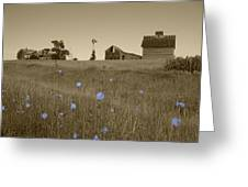 Odell Farm V Greeting Card